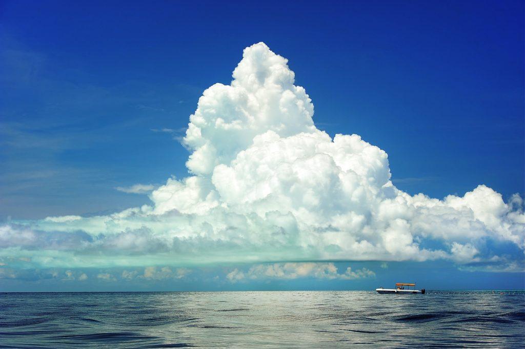 シリアスゲーム ,ボードゲーム,東京大学,海洋資源管理,全漁連